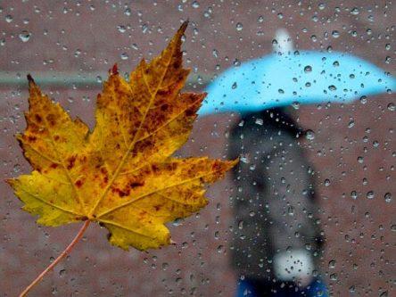 Рясні дощі та похолодання: синоптики попереджають про погіршення погоди